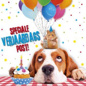 Alsnog Gefeliciteerd Met Je Verjaardag